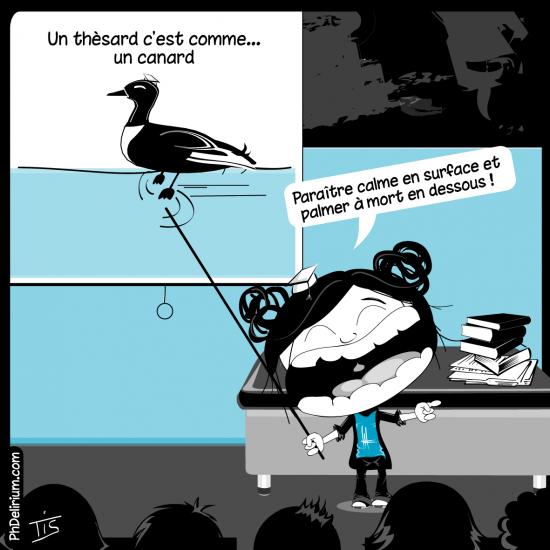 thesard canard humour doctorat