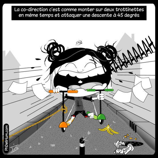 co-direction doctorale